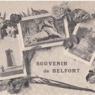 CJ33.Vintage French Multiview Postcard. Souvenir de Belfort