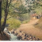 CH15.Vintage German Postcard. View of a cottage in the woods.