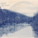CO64.Vintage German Undivided Postcard. Baden-Baden de Waldsee. River and Woods