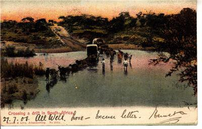 CP03. Vintage Postcard. Crossing a drift in South Africa.River and oxen carts.