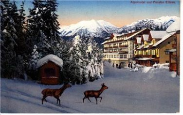 CO89. Vintage German Postcard.Alpen Hotel, Eibsee. Deer in the snow.