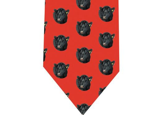 Aberdeen Angus Cow Tie -  model 1