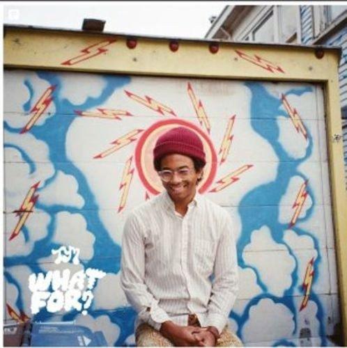 "Anything In Return Vinyl | LP (12"" album, 33 rpm) Toro Y Moi (Artist)"