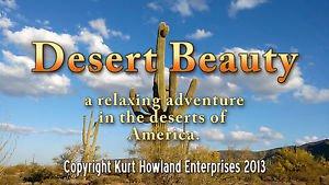 """Desert Beauty"" Relaxation / Meditation Video DVD"