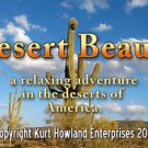 """Desert Beauty"" Beautiful Scenery of the Sonoran Desert, Travel / Relaxation DVD"