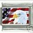 USA FLAG & EAGLE