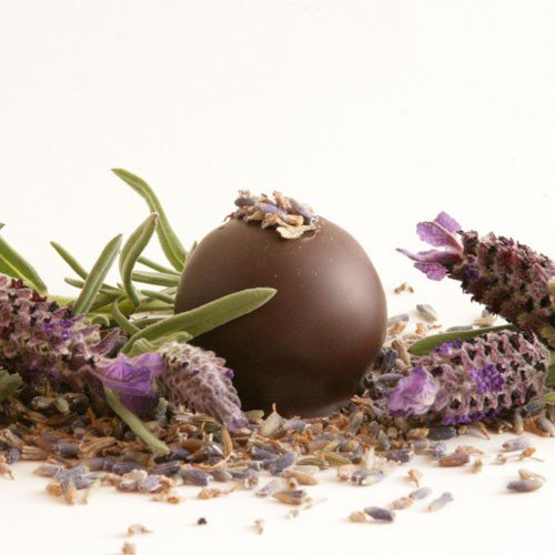 Natural Chocolate Lavender Scented Soy & Shea Butter Body Lotion 16 Oz