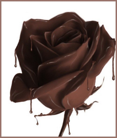 Natural Chocolate Rose Scented Soy & Shea Butter Body Lotion 16 Oz