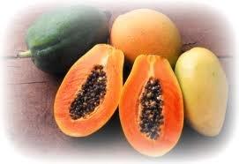 Natural Mango Papaya Scented Soy & Shea Butter Body Lotion 16 Oz