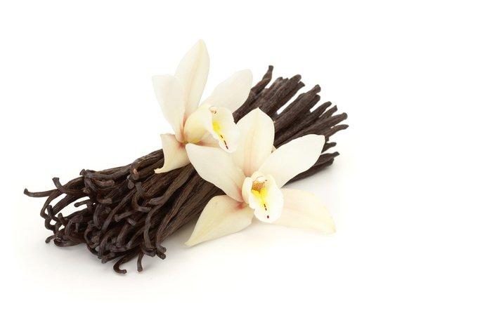 Natural Vanilla Soy & Shea Butter Body Lotion 16 Oz
