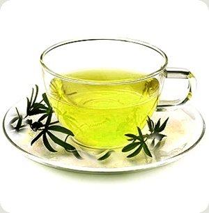 All Natural Green Tea Scented Shampoo 2 Oz