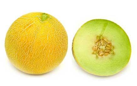 All Natural Honey Melon Scented Shampoo 16 Oz