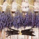 All Natural Lavender Vanilla Scented Shampoo 2 Oz