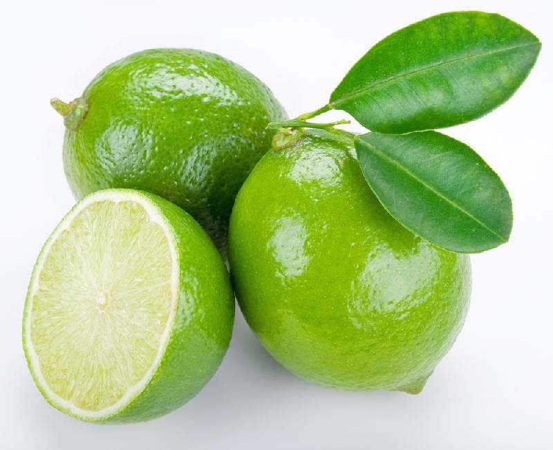 All Natural Lime Scented Shampoo 2 Oz