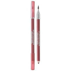 Lancome Le Lipstique Sheer Lipcolouring Stick with Brush Sheer Plum NEW