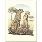 "Alan Carman - ""Cheetahs"" Limited Edition Lithograph"