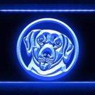 Labrador Retriever Dog Pet Shop LED Light Sign Bar Beer Pub Store