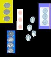 5 PKs of Buttons
