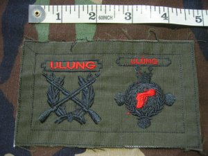Indonesian Military Sharpshooter (Ulung) Rifle Pistol Patch FREE SHIPPING!