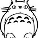 Totoro Anime 5