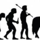 Evolution of Cowboy 2
