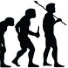 Evolution of Karate