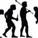 Evolution of MMA Fighter
