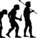 Evolution of Soccer