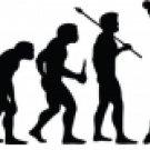 Evolution of Softball