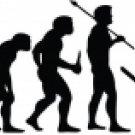Evolution of Tree Sniper