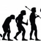 Evolution of Trumpet