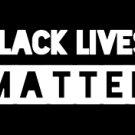 "BLACK LIVES MATTER (4""X 9"")"