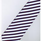EPP10 Puple White Blue Stripe Neck Tie