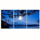 VISUAL STARFull Moon Stretched Canvas Print Mountain Scenery Wall Art Ready to Hang