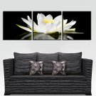 Stretched Canvas Art Floral Graceful White Set of 3