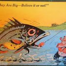 Man Catches LG Exaggeration Fish-Believe it or Not! - Vintage Comic Postcard