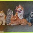 5 Fluffy Furry KITTENS KITTY CATS-Artist Signed-Vintage Undivided Back Postcard