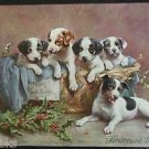 5 Puppy Dogs in Basket Artist Signed CK Antique Vintage Christmas Postcard