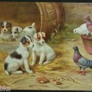 4 Puppy Dog Terriers & Pigeons Artist Signed E. Hunt Antique Vintage Postcard