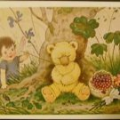 Fairy Child Tickle Sleepy Teddy Bear Bug-Signed Baumgarten Vintage Postcard 1960