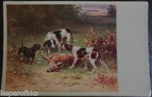 Hunting Dogs Dead Deer in Field Brush Artist Signed Antique Vintage Postcard