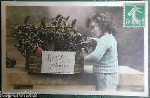 YOUNG BOY CAT in BASKET COLORED ANTIQUE FRENCH NEW YEAR REAL PHOTO POSTCARD