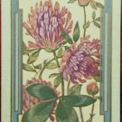 """CLOVER"" - 1 COPYRIGHT 1908 ANTIQUE NARROW NAMED SWAP PLAYING CARD"