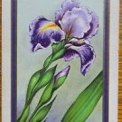 """PURPLE IRIS""-USPC COPYRIGHT ANTIQUE VINTAGE USNN NARROW NAMED SWAP PLAYING CARD"