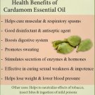 Ambrosial Cardamom Essential Oil 100% Pure Organic Natural