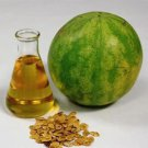 Ambrosial Watermelon Seed Essential Oil (Citrullus Lanatus) 100% Natural Organic