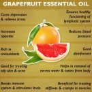 Ambrosial Grapefruit Essential Oil Pure Natural Organic 10ml to 1000ml