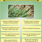 Ambrosial Vetiver Essential Oil 100% Natural Pure Organic Uncut Undiluted