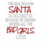 The Real Reason Santa Is SO Jolly Is He Knows Where All The Bad Girls Live Tee Shirt