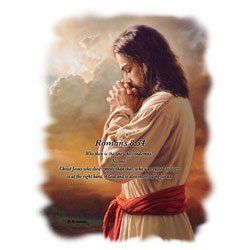 Romans 8:54 Jesus Tee Shirt